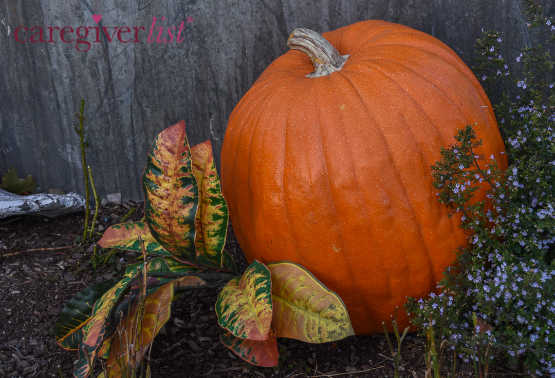 Stress Relief Photo: The Great Pumpkin