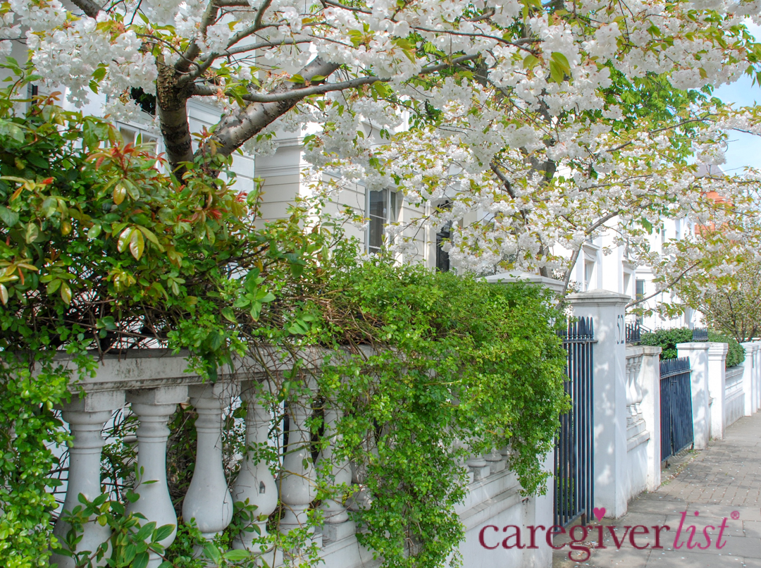 Spring in Notting Hill: Stress Relief Photo