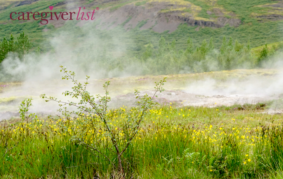 Summer Green in Iceland: Stress Relief Photo